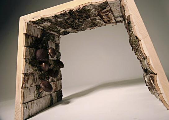 mushroom-furniture