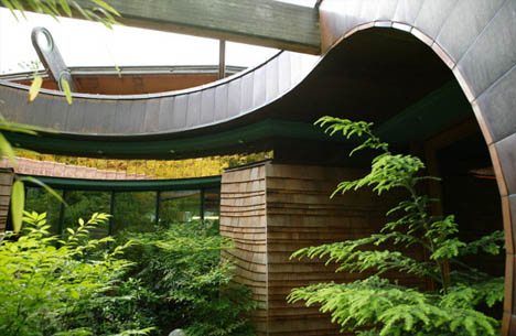 organic-naturalistic-forest-house
