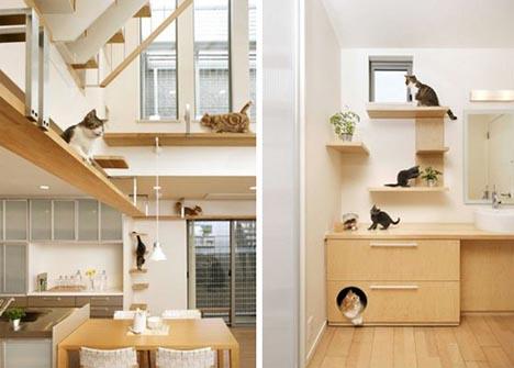 Pet Purrrfect The Ultimate Cat Friendly Interior Design Designs Ideas On Dornob