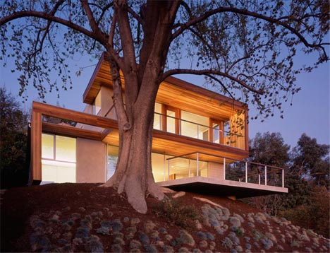 tree-and-house-design