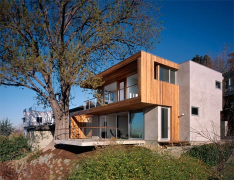tree-and-house-together