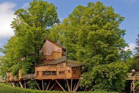 giant-cool-tree-house-design