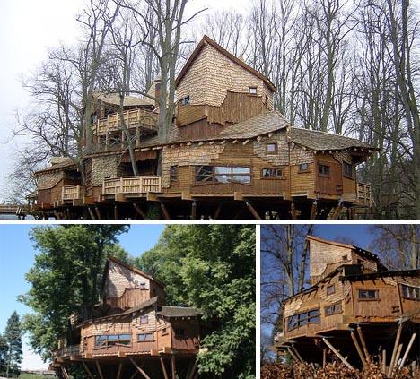 Large Tree  House