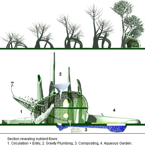 growing-treehouse-plans-diagrams