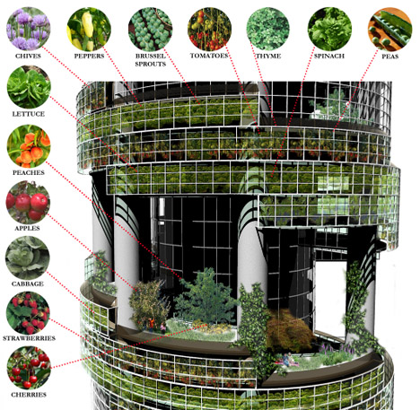 urban-farm-plants-vegetables