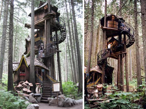 fantasy forest treehouse