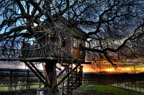 tree house haunted image
