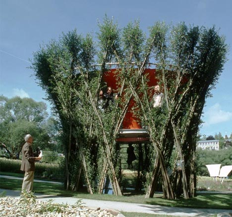 growing living tree house