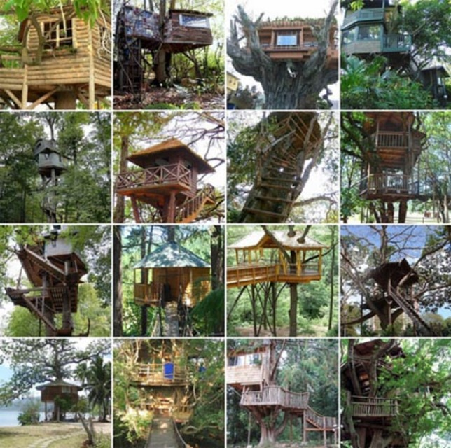 Diy Tree House Plans Ideas Designs Ideas On Dornob