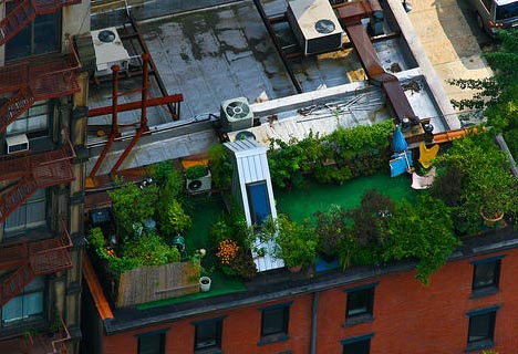 & green rooftop deck residence