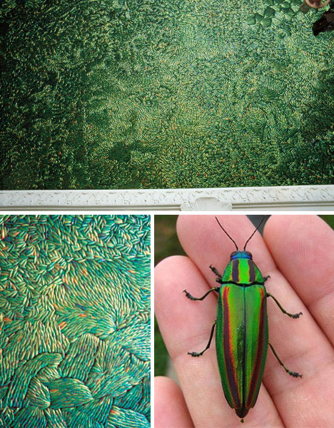 creative green beetle material
