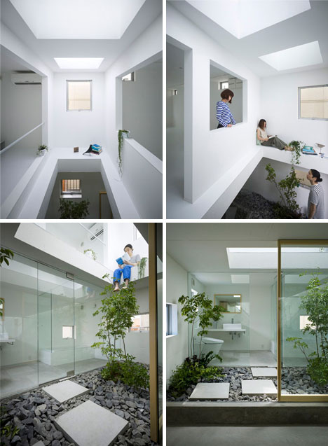 Green home atrium space