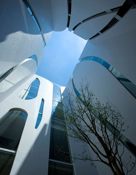 modern organic architecture