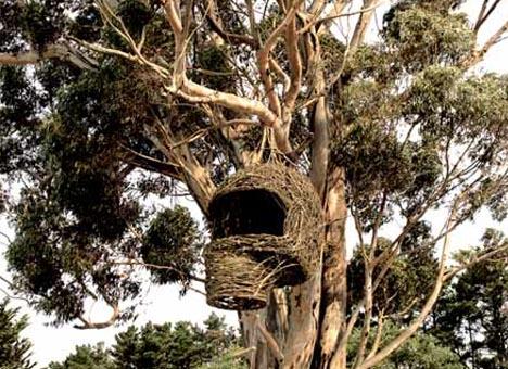 organic tree house exterior