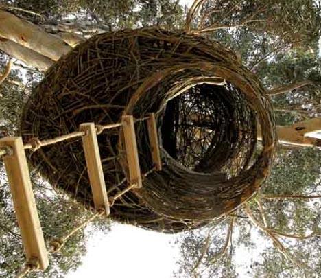 organic tree house up