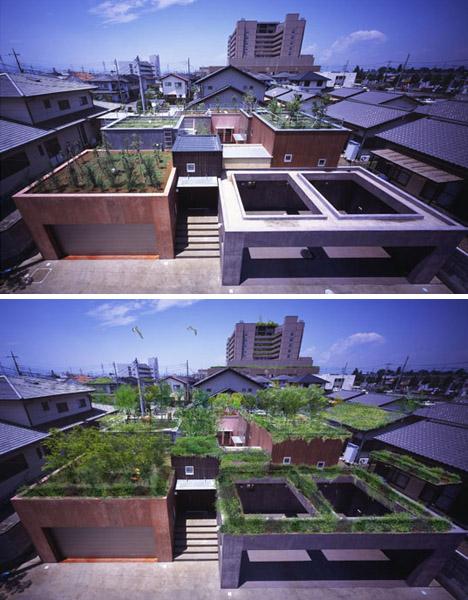 Secret garden sublime japanese green roof deck design for Roof deck design