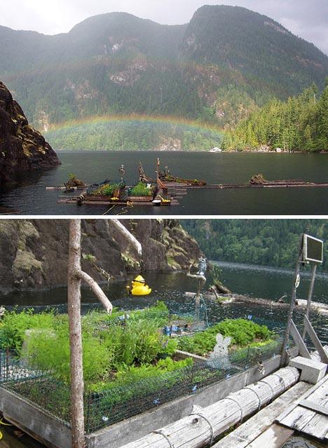 Houseboat? Hah! Buy a Full Floating Cabin, Porch & Garden ...