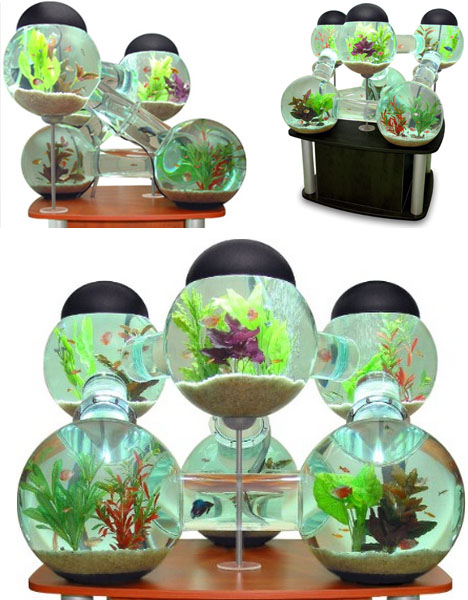Awesome aquariums 5 cool modern fish tank designs for Awesome fish tanks