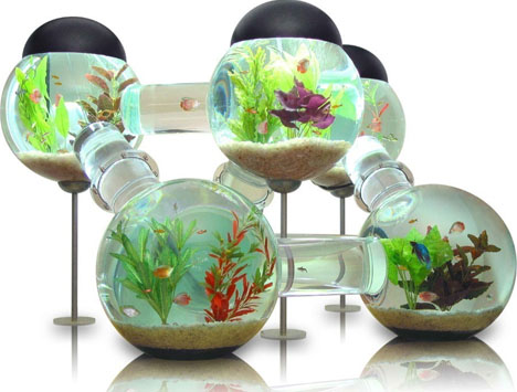 Awesome Aquariums 5 Cool Modern Fish Tank Designs