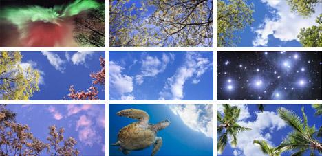 Virtual Light 12 Faux Natural Windows Amp Fake Sky Ceilings
