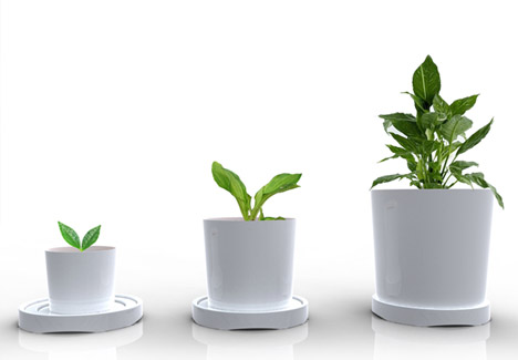3 Sizes In 1 Plastic Pot Grows Out As Your Plants Grow Up