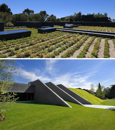 Cozy Mix Heavy Concrete Home Flowing Green Roof Forms