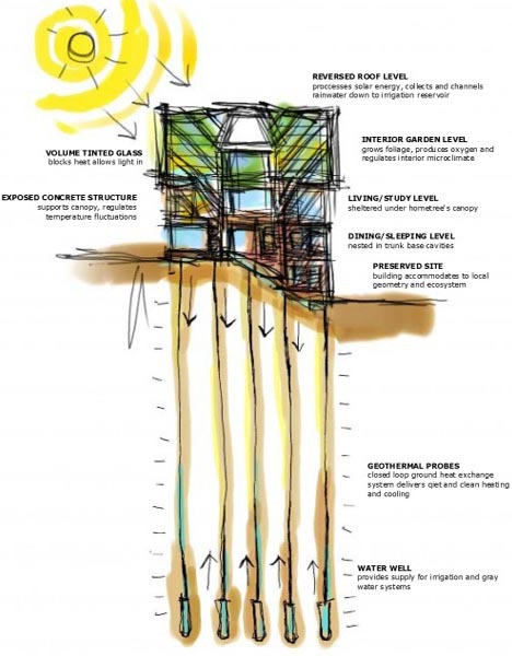 Tree inspired house has green canopy geothermal roots for Geothermal house plans