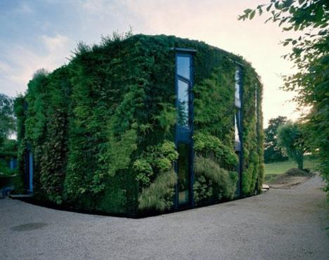 Green Screen Exotic Plants Crawl Up Living Exterior Walls Designs Ideas On Dornob
