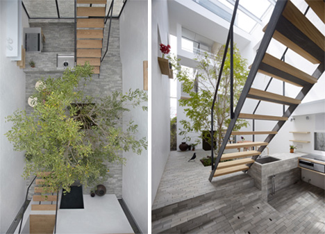 Outside In House Lively Courtyard Brings Nature Indoors