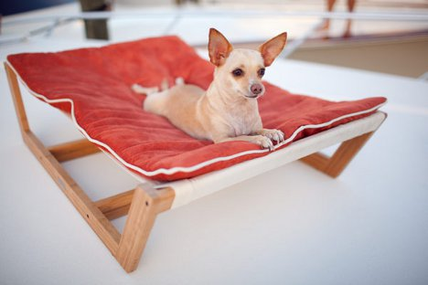 Awesome Little Loungers: Sweet Suite Of Furniture For Pampered Pets