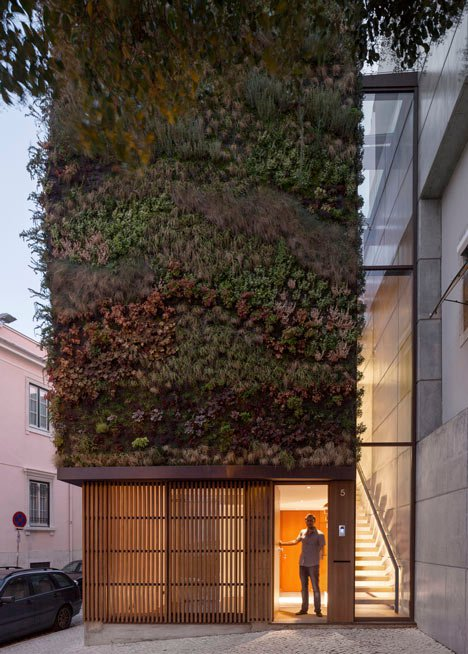 Green Walled Home Features Different Plants for Each Area