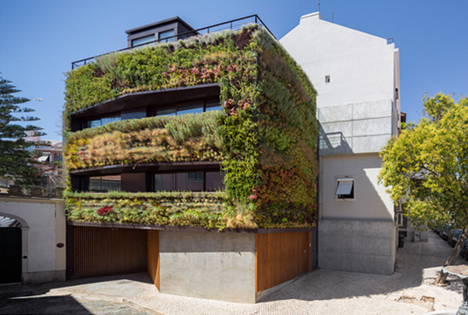 Vertical Garden Home Facade Covered In 25 Kinds Of Plants