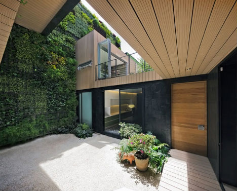 ... In An Interior Courtyard. The Green Wall Helps Control The Temperature  Inside The Home, And Brings A Sense Of Energy And Vitality Into The Space.