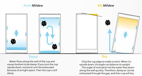 mildew in drying cups