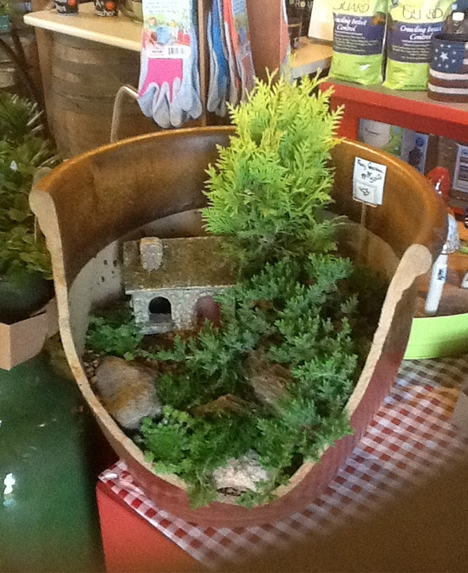broken pot house tree