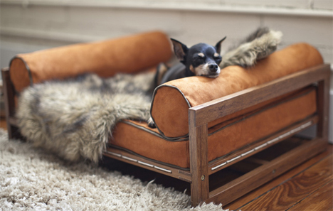 Chihuahua Bed Architect Pets. Modern Pet Furniture