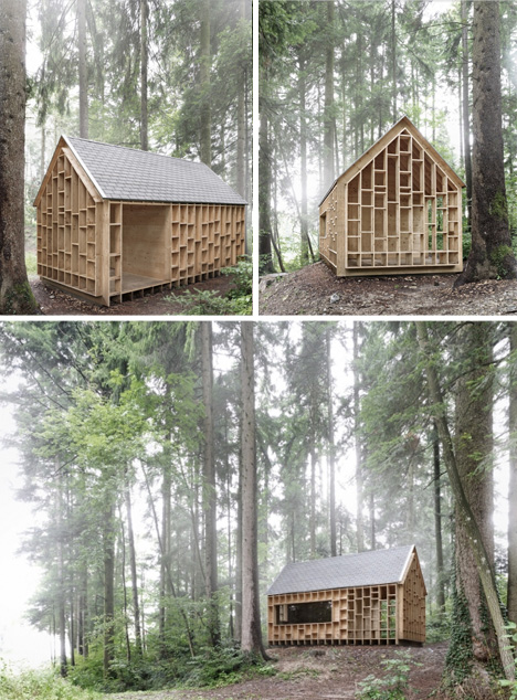 forest dwelling in context