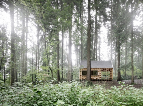 forest owl house