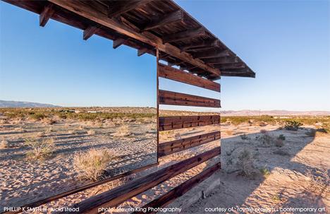 lucid stead desert shack