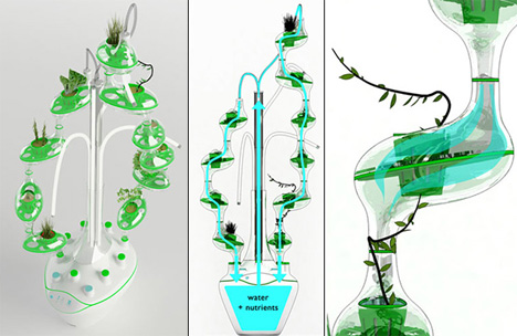 self contained hydroponic garden
