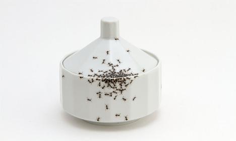 ants on sugar bowl