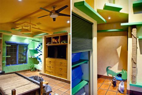 goleta california cat house interior