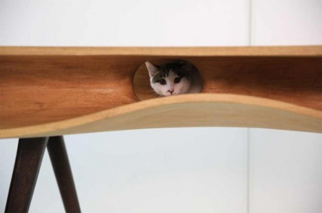 desk with cat hiding places