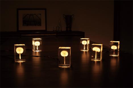 glowing dandelion lamps