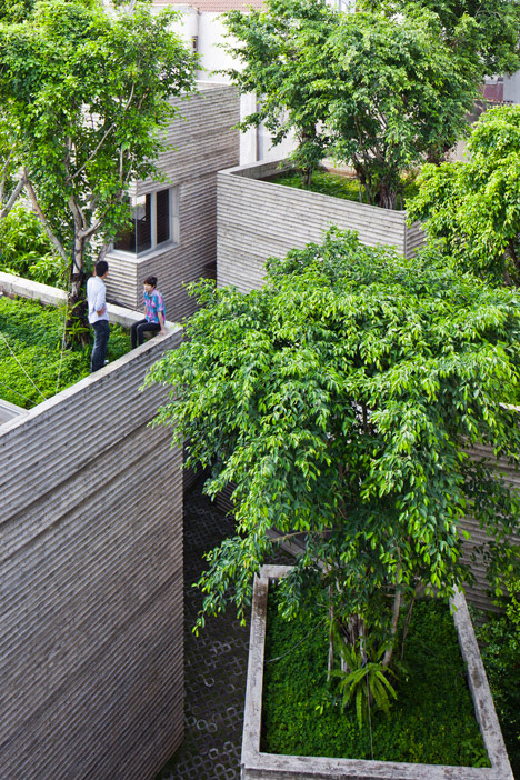 Tree Topped Rectangular Houses Look Like Giant Potted