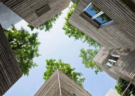 Tree Topped Houses Vietnam 4