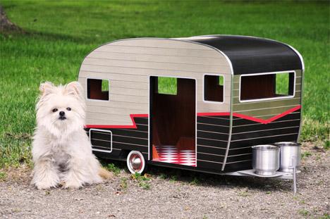 Dog Camper 2