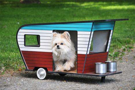 Dog Camper 3