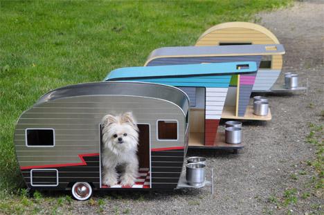 Dog Camper 6