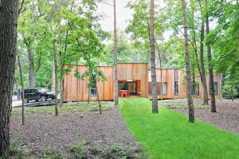 house built around trees